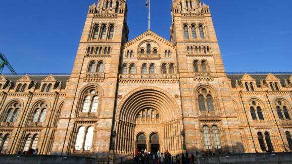Exterior- Natural History Museum in London