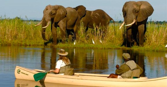 Untamed Zambia, a Luxury Link Exclusive Zambia
