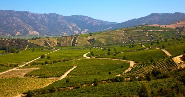 Wine World Tours, South America