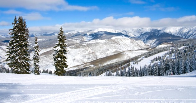 Triumph Mountain Properties, Vail Homes