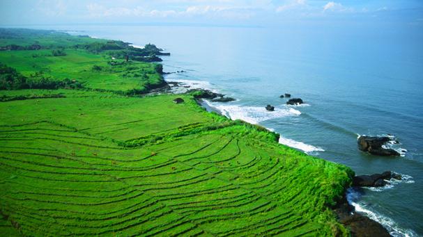 Aerial photo of Farmland in Bali