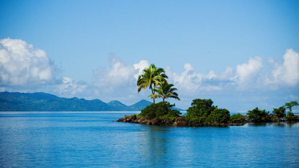 Palm tree peninsula