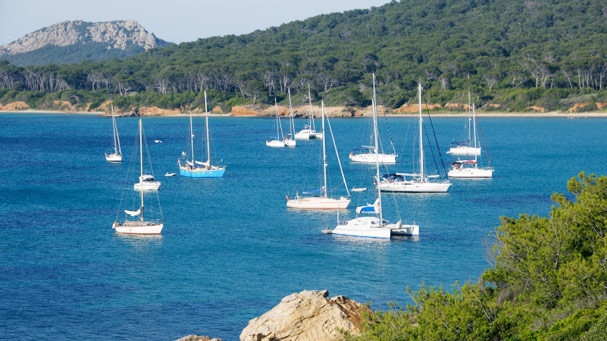 Island of Porquerolles
