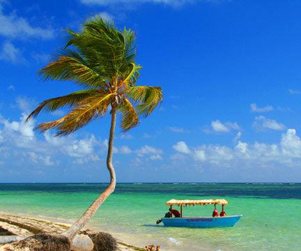 Jamaican Shore