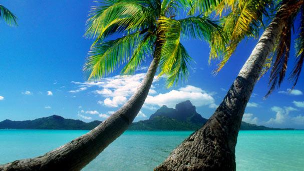 Tahitian isles